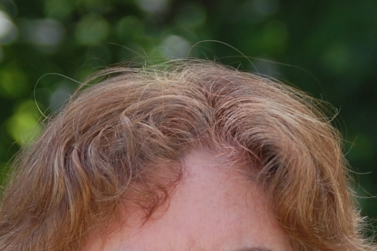 How To Fix Gray Hair Roots With Photoshop Learn Pro Photography