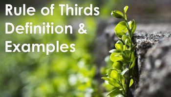 Rule of Thirds Definition & Examples thumbnail